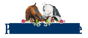 Для друзей лошадей, Pferdefreunde