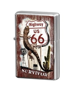 Tulemasin / Route 66 Survivor  / LM