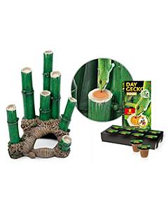 Terraariumi Exo Terra Bamboo Forest Habitat small / 30x30x45cm