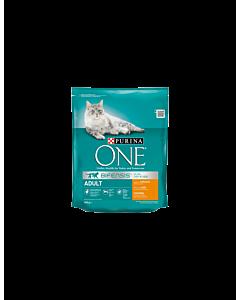 ONE Adult kuiv kassitoit, kana/täisteranisu / 800g