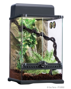 Klaasist terraarium - Exo Terra Habitat Kit Rainforest / 30х30х45cm (PT2660)
