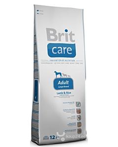 Brit Care koeratoit suurt tōugu täiskasvanud koertele lambalihaga /  3kg
