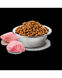 Farmina Chicken & Pomegranate Mini & Medium Puppy - täissööt kanaliha ja granaatõunaga väikest ja keskmist tõugu kutsikatele / 2,5 kg