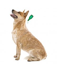 Beaphar VETO-Pure Spot-on parasiitide vastased tilgad koertele (15-30kg)
