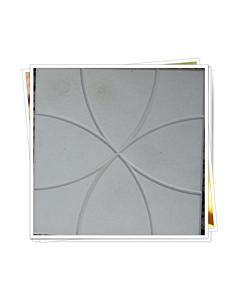 Plastvorm Plaat / 25,0x25,0x2,5cm