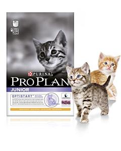 Pro Plan Junior Chicken & Rice / 1,5kg