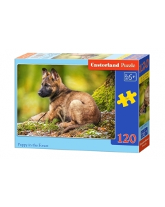 Puzzle Castorland Puppy in the forest 32x23cm / 120tk / LM