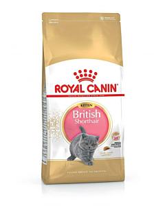 Royal Canin FBN Kitten British Short kassitoit / 400g