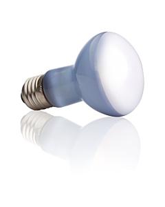 Soojenduslamp Exo Terra Sun Glo Neodymium R20 / 50W