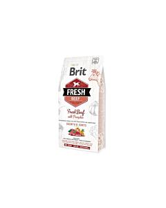 Brit FRESH Beef&Pumpkin LB Puppy / 12kg