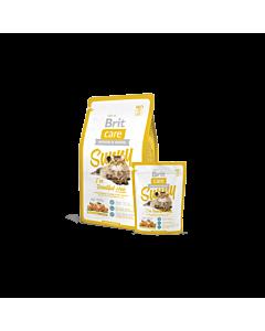 Brit Care Cat Sunny täissööt pikakarvalistele täiskasvanud kassidele (lõhe ja riis) / 2kg