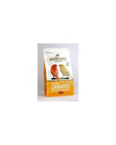 Padovan PD lindude täissööt Wellness kanaarilindudele / 1kg