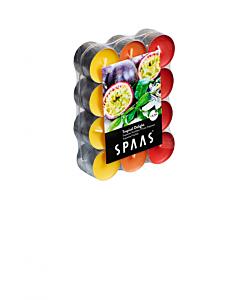 #Lõhnastatud teeküünal troopilised viljad 4,5h / 24tk pakis