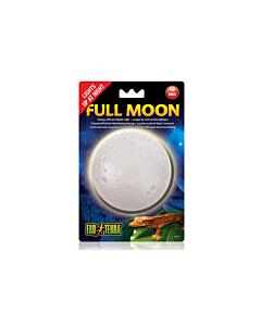 Valgusti Exo Terra Full Moon